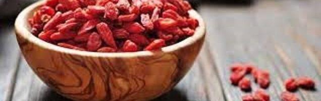 Goji Berry – Descubra os Benefícios desta Super Fruta Asiática