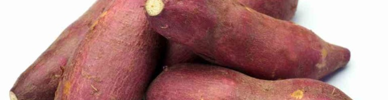 Batata Doce – Benefícios para sua saúde